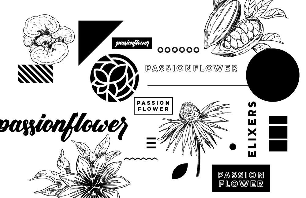 passionflower-01.jpg