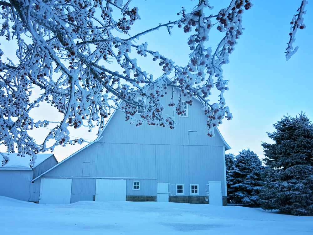 Remington Indiana Barn