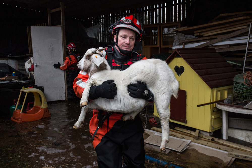 Fire crews rescue goats from rising waters
