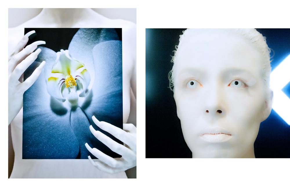 Biomimicry (Kate)