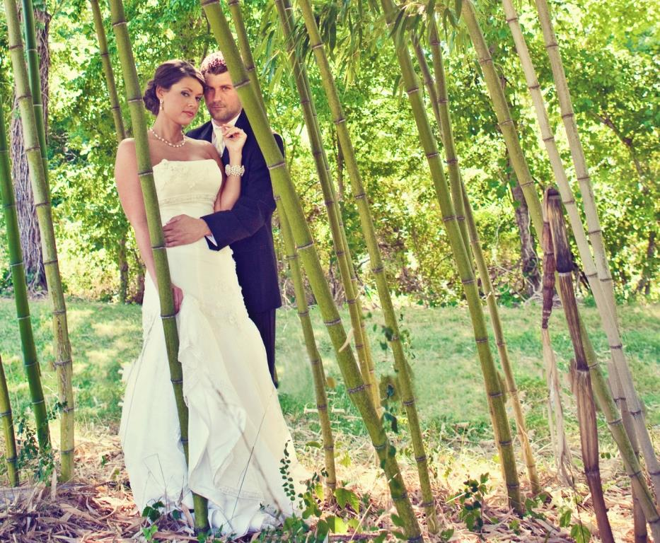 Stunning couple standing in bamboo