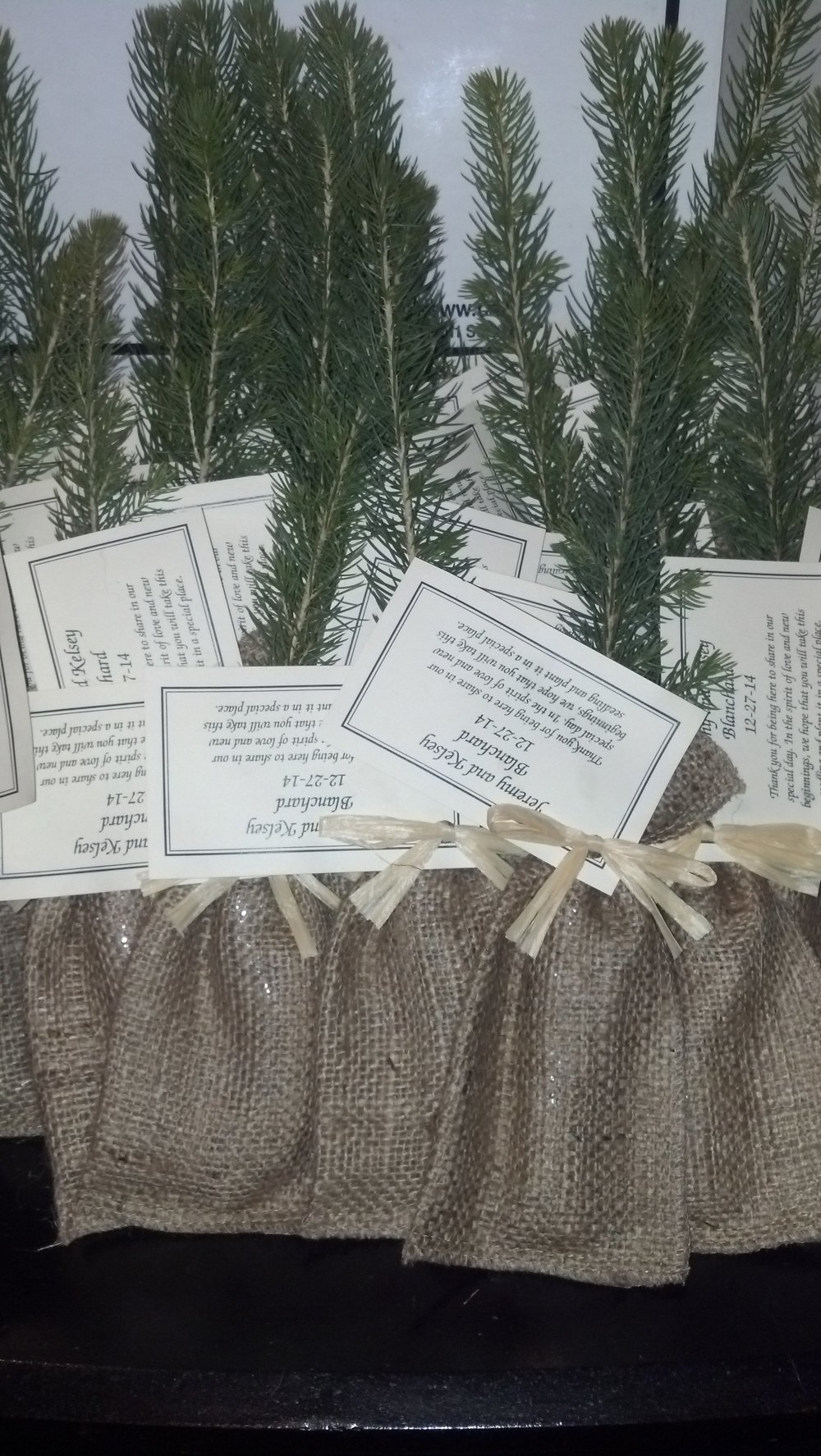pine cone tree guest favors