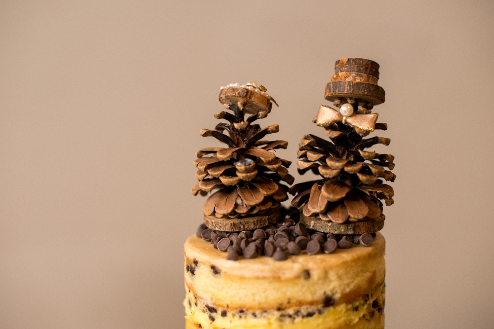 pinecone cake topper.png