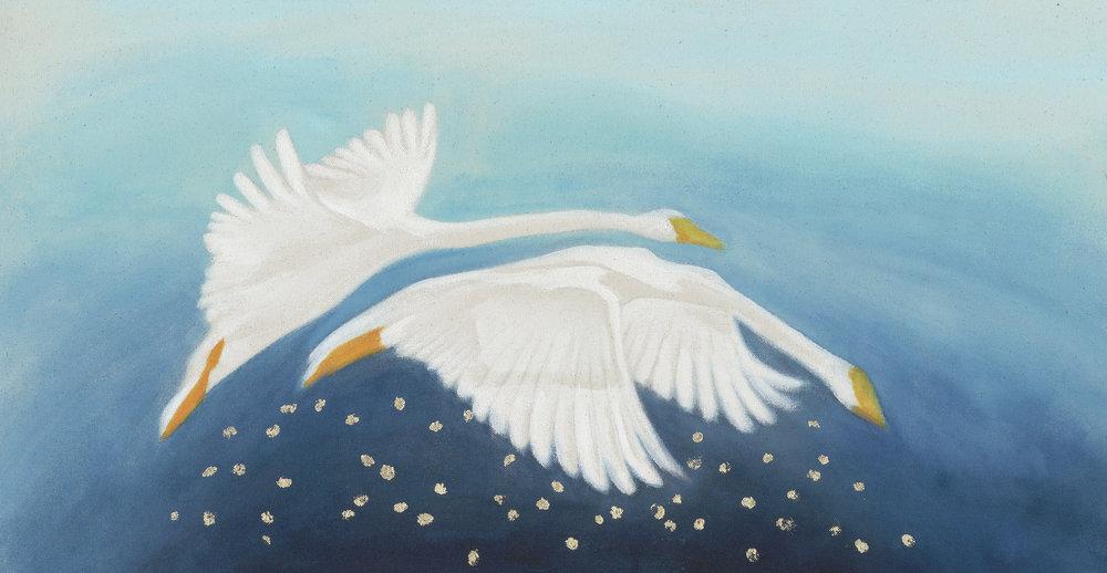 swan web.jpg