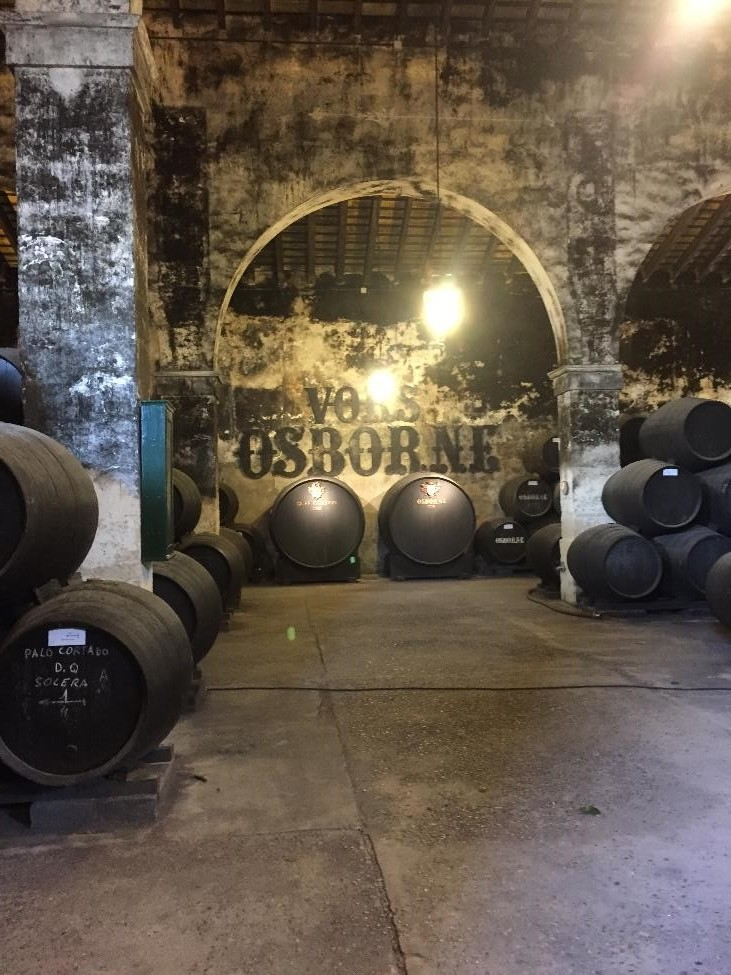 On the tour in Puerto, you can see Osborne Bodega's collection of Very Old Rare Sherry (VORS).