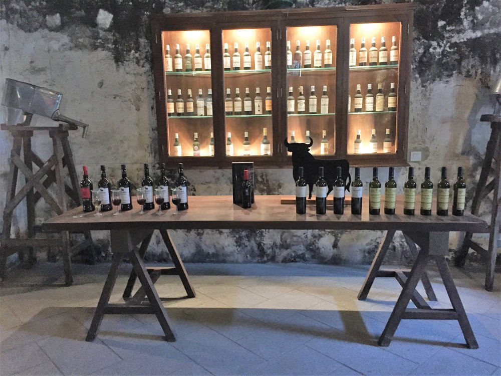 At the end of the tour, the guide presents all of the sherry varieties at once, before leaving you to taste on your own.