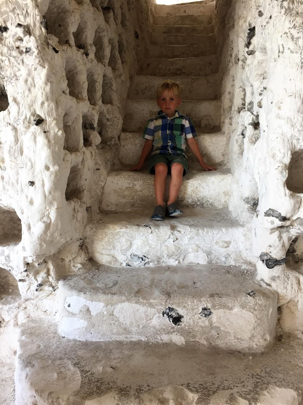 Here he sits in the dovecote, which used to house carrier pigeons.