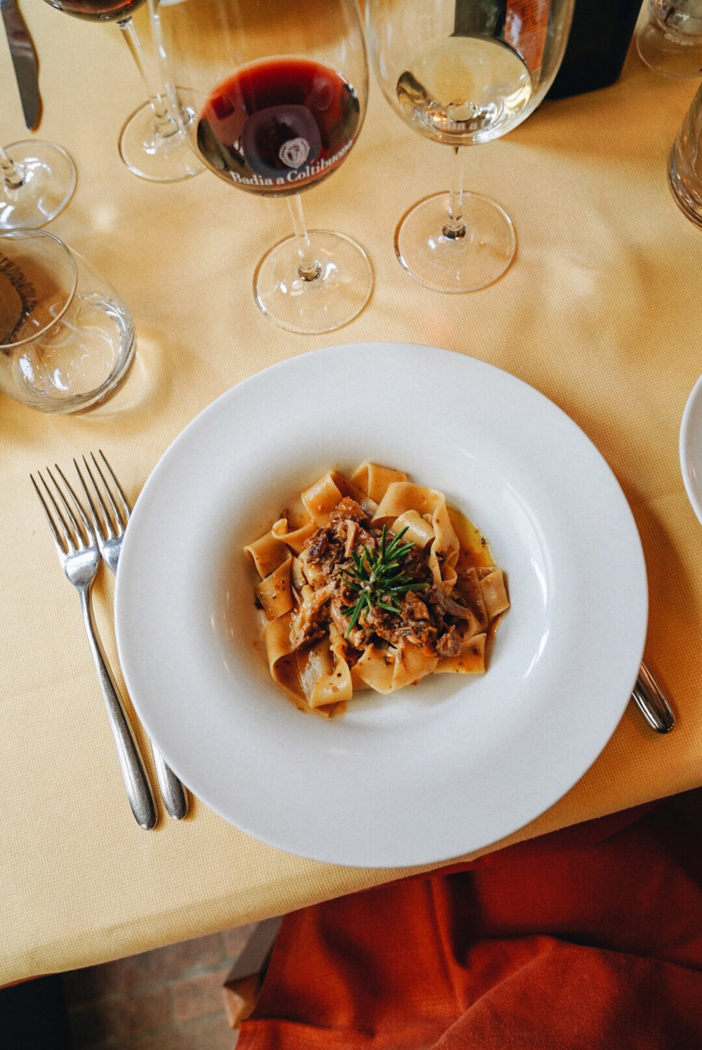 Pappardeile fatte in casa con ragout di anatra,  Homemade large noodles with braised duck sauce