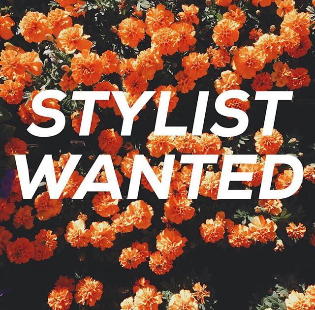 Looking for a place to work your magic? We are looking for hairstylists in the DFW area to work here at Primp! Rent a chair from us in the historic Downtown McKinney. If interested and want more info, email primp@primpsalonboutique.com 💕