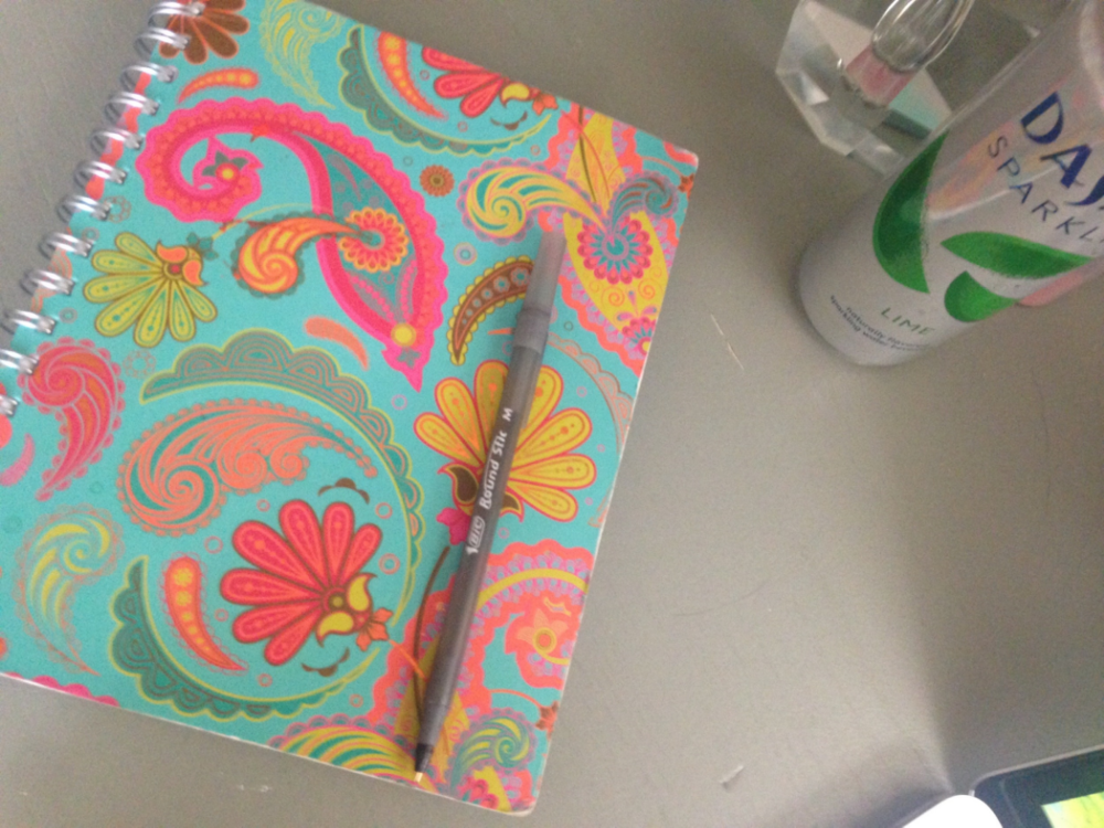I've written down my list of names inside this notebook. And then I took a swig of Dasani. Because I have a thing for Dasani.