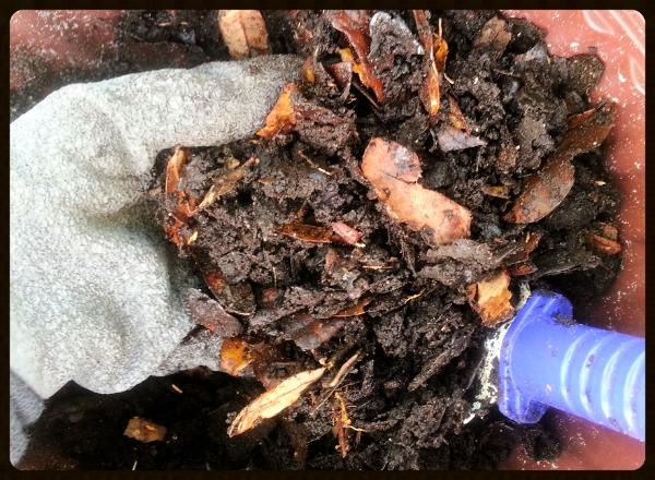 Homemade Soil