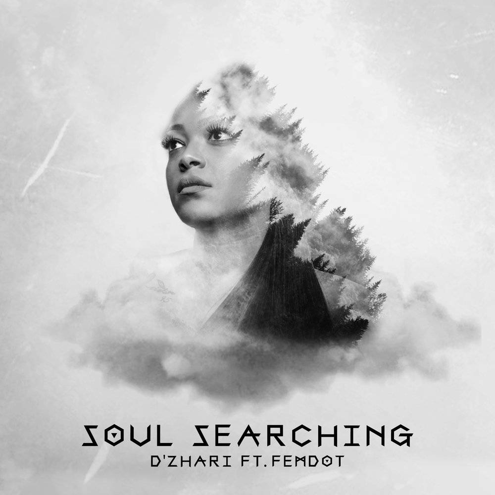 Soul-Searching-Cover-Art.jpg