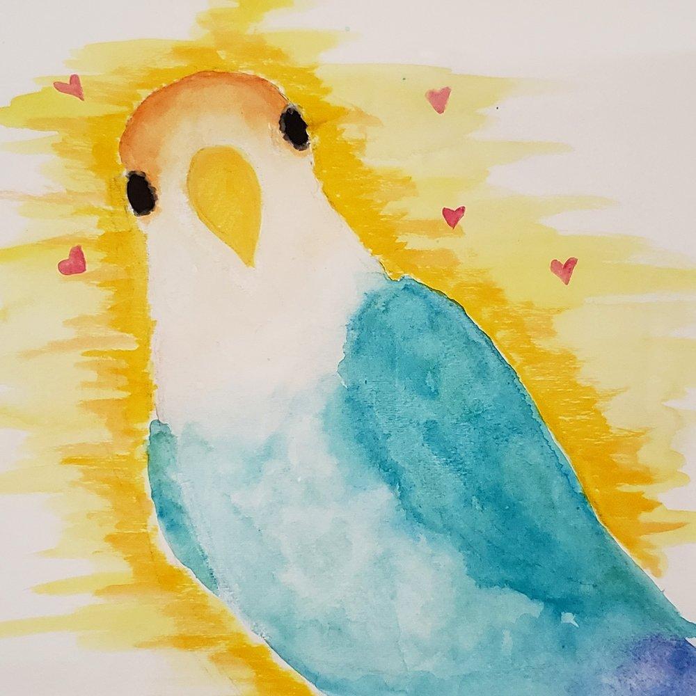 Watercolor of our bird Indie by Laurel