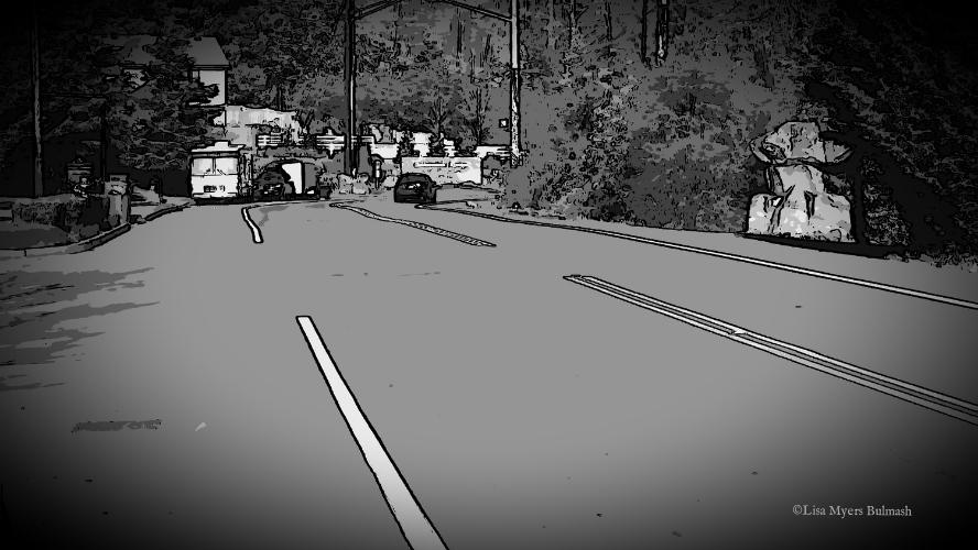 curving road bw.jpg