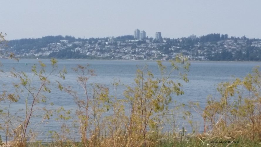 Semiahmoo Bay. Photo: Lisa Myers Bulmash