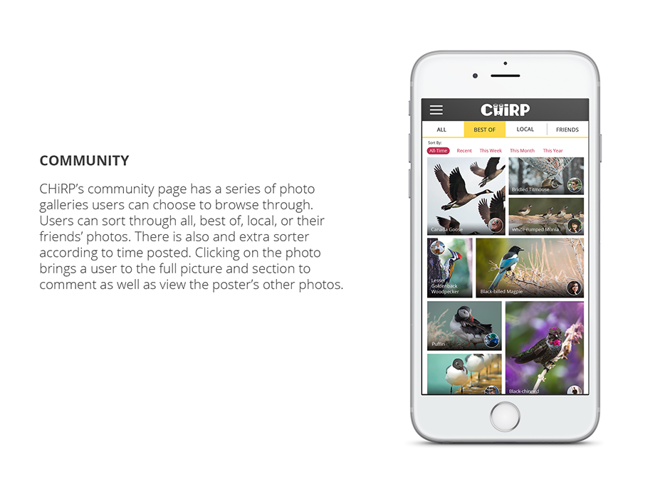 Chirp - Community-website.png