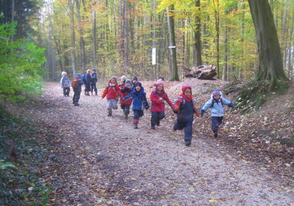 forest kindergarten