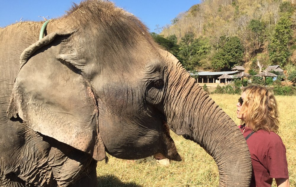 Unforgettable - a day at Elephant Nature Park outside Chiang Mai