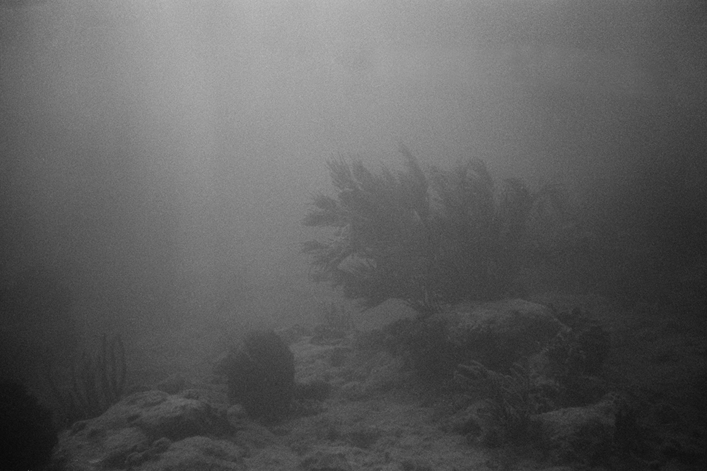 Seabed #3