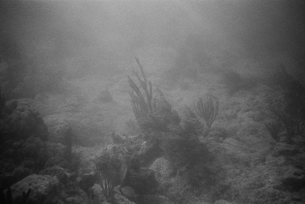 Seabed #7