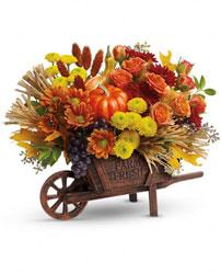 d46097eea96711 Fall Flowers — Oakland Florist - Flowers Flower Delivery by Apple ...