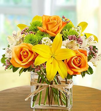 Fields Of Europe In Rectangle Vase Oakland Florist Flower