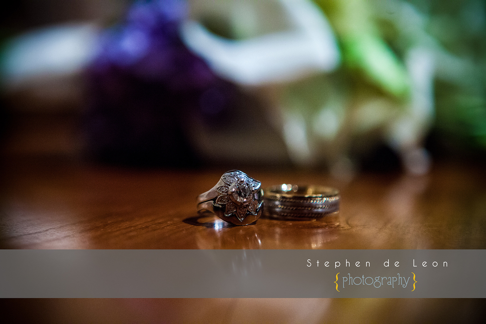 Stephen_de_Leon_Capitol_Wedding_Photography_46.jpg