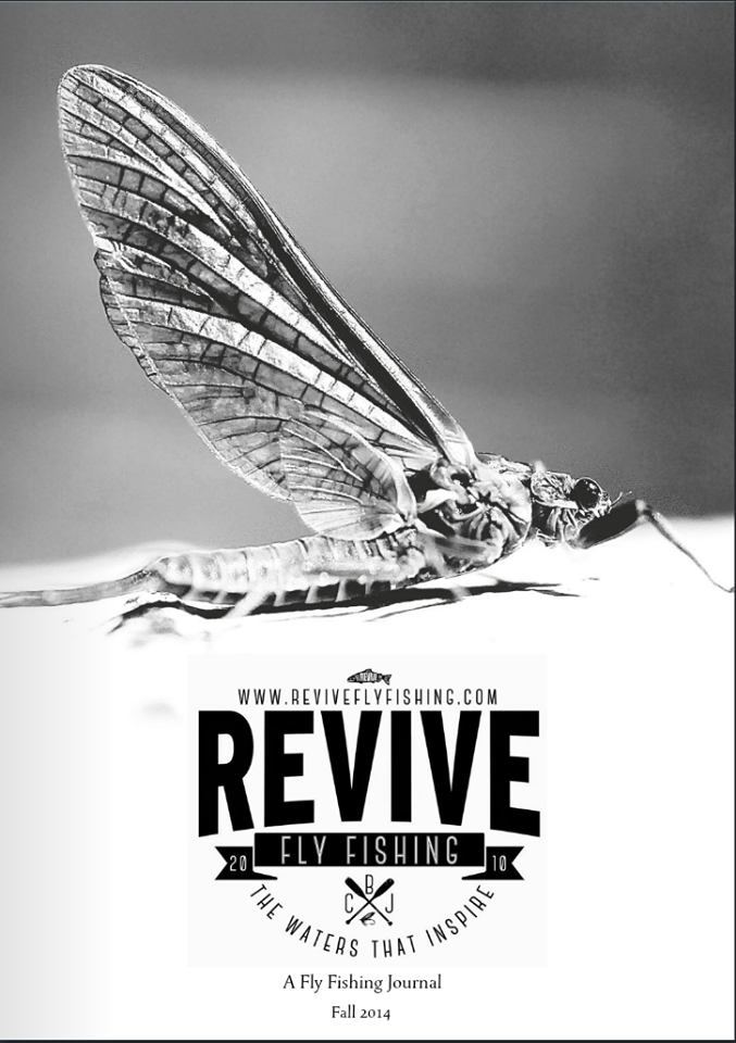 Revive Volume 2, Edition 2 Cover (photo by - Matt Guymon)