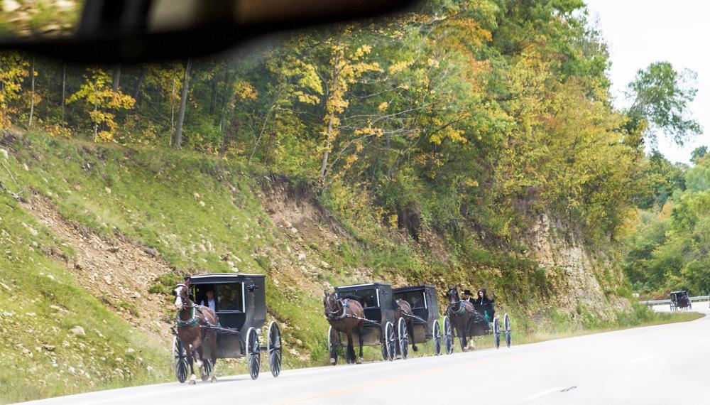 Amish on Parade.jpg
