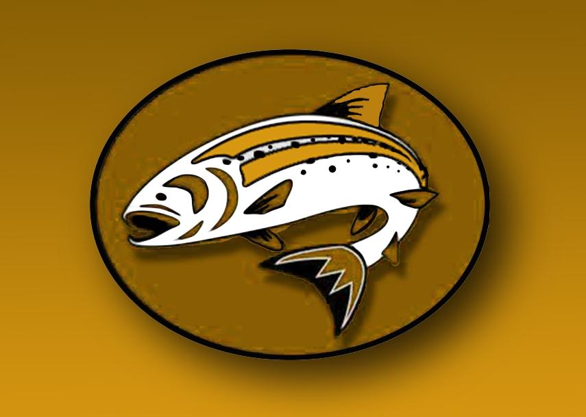002 salmon.jpg