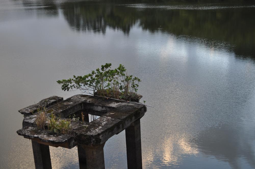 lago-puerto-rico-ecostahlia