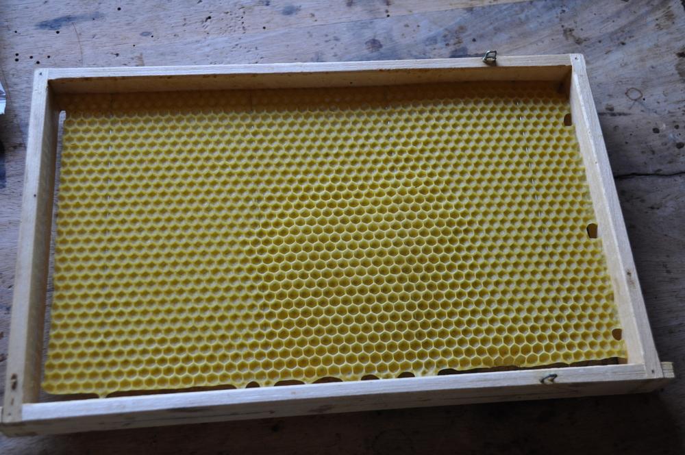 miel apiraio zug suiza ecostahlia