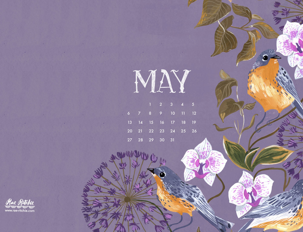 May18__Ipad.jpg