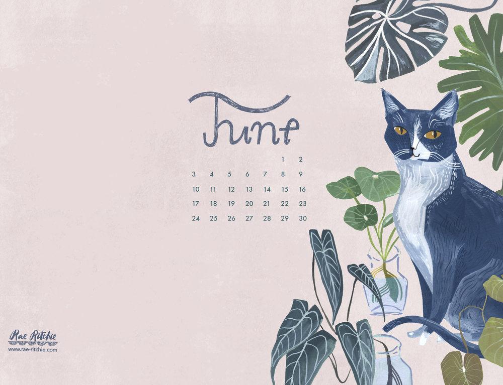 June18__Ipad.jpg