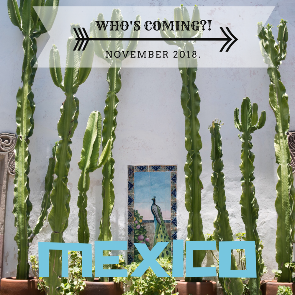 Culture + Cuisine: Adventure to Mexico November 4-14th, 2018!