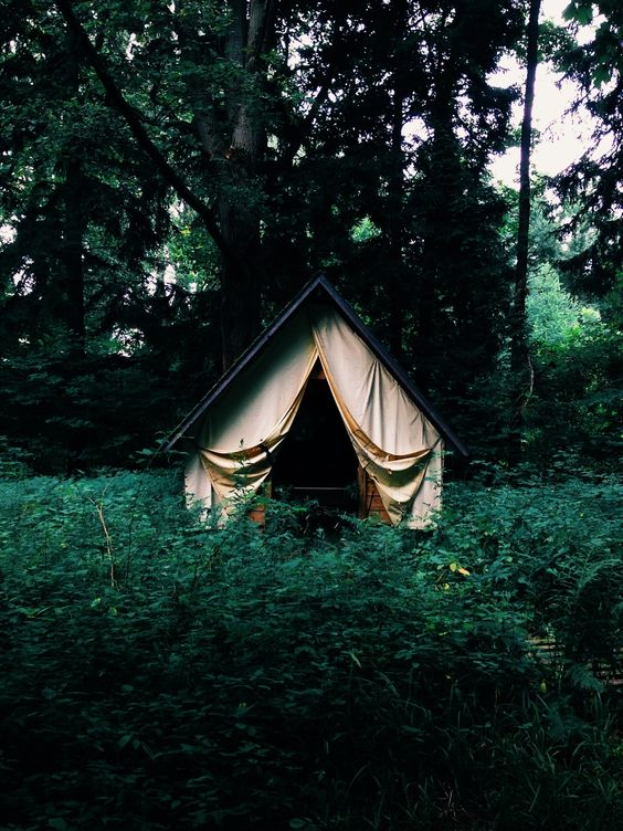 Wanderwood - coaching - home.jpg