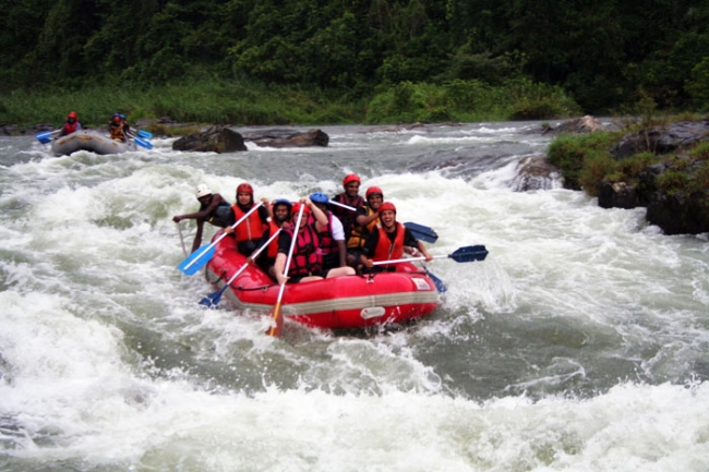 Jungle Rafting SL.jpg