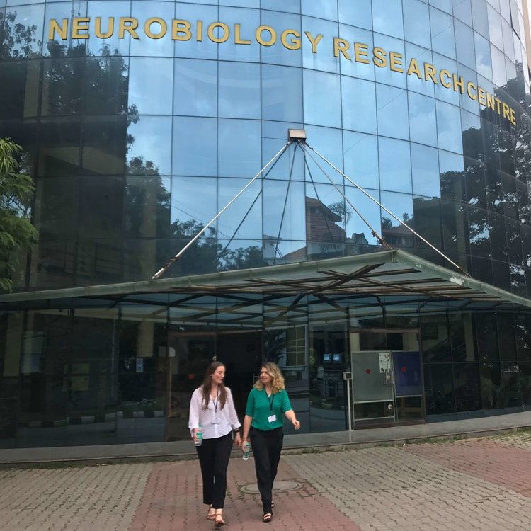 Lee and Jess - Neuroscience.jpeg