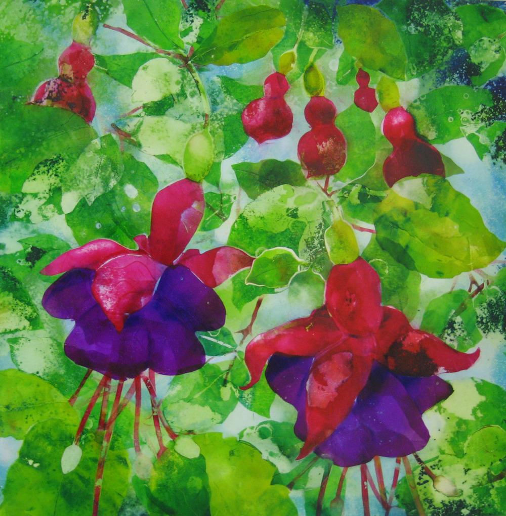 Summer Dance (Fuchsias)