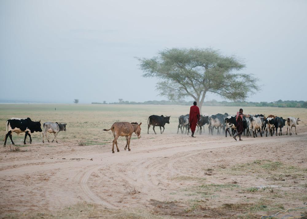 Deb Schwedhelm Tanzania13.jpg
