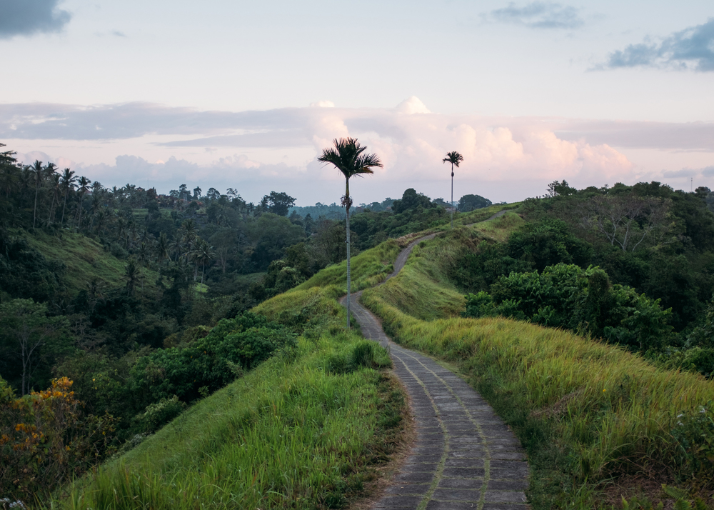 Winding Path, Indonesia, 2015