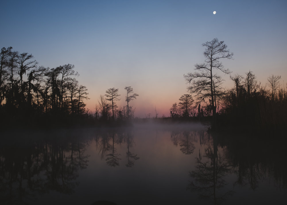 Sunrise, Mississippi, 2016