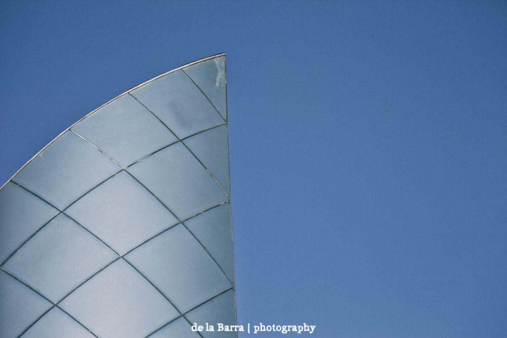 delabarraphotography-453.jpg