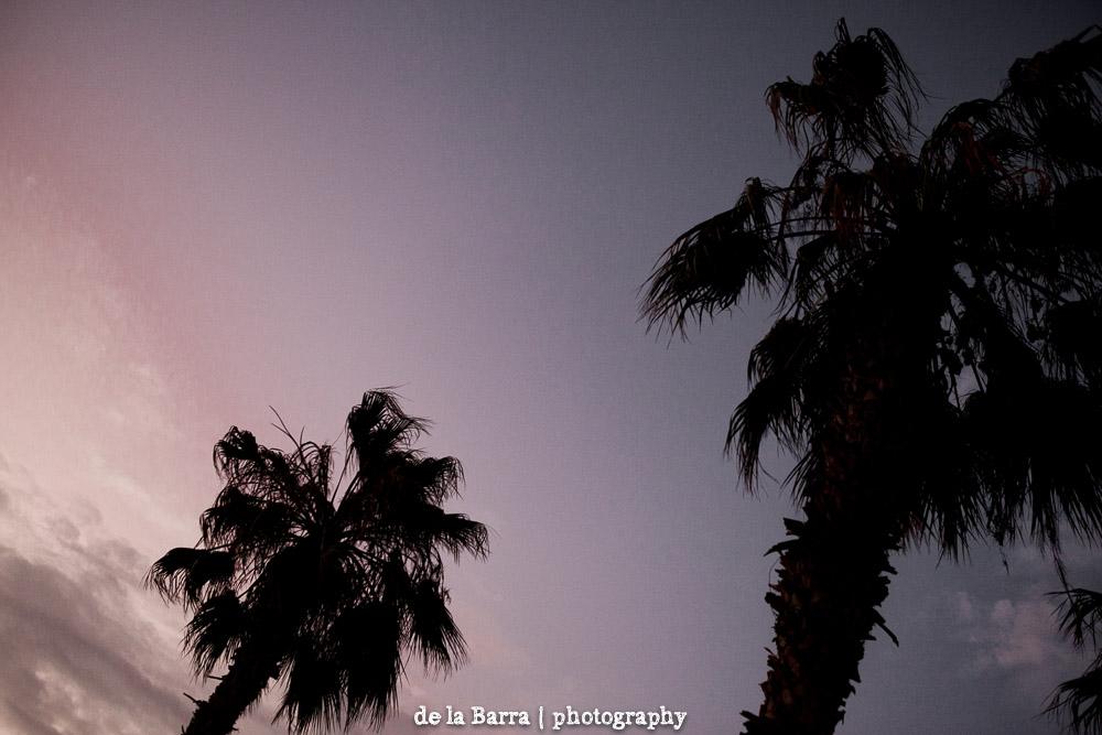 delabarraphotography-95.jpg