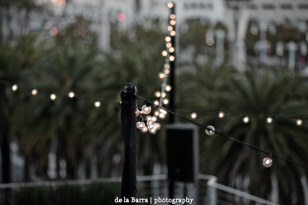 delabarraphotography-274.jpg