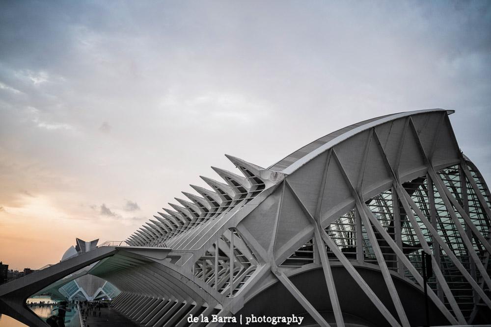 delabarraphotography-31.jpg