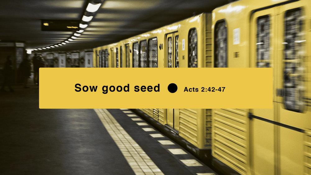 Sow Good Seed.009.jpeg