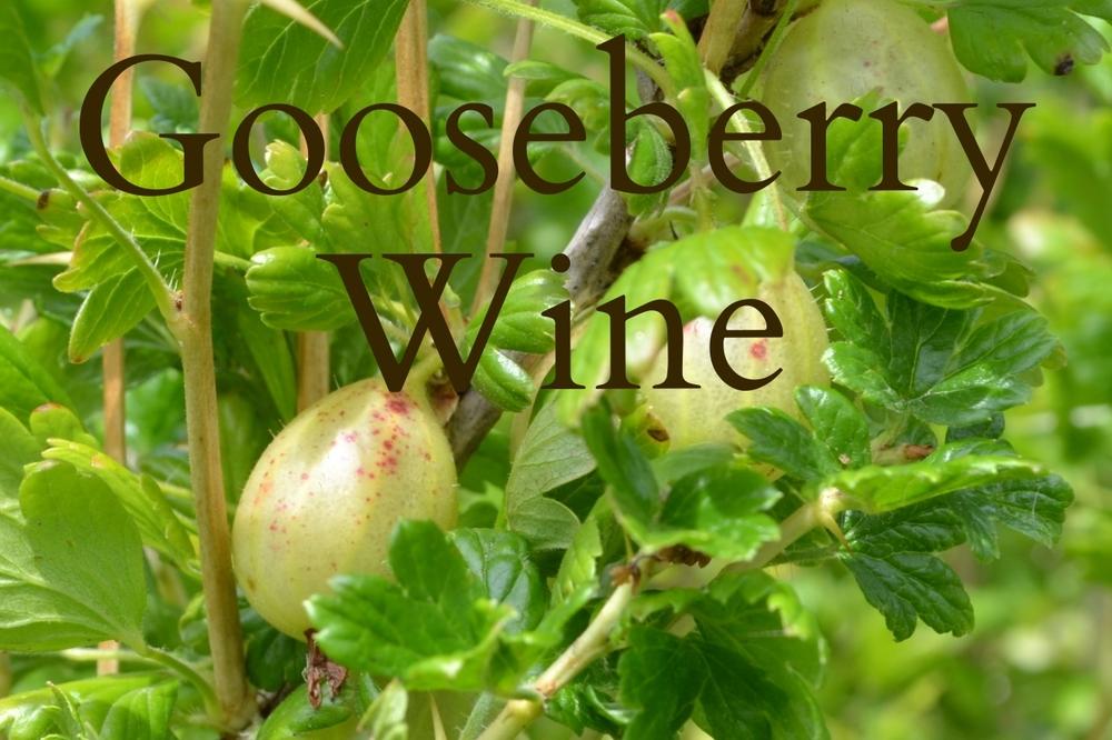 Gooseberries Cropped.jpg
