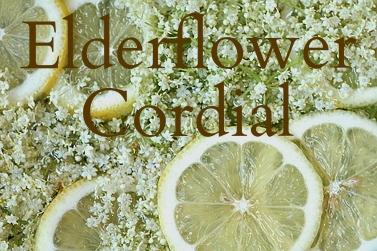 elderflower and lemon.jpg