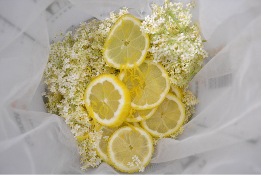 Elderflower Cordial Making.jpg
